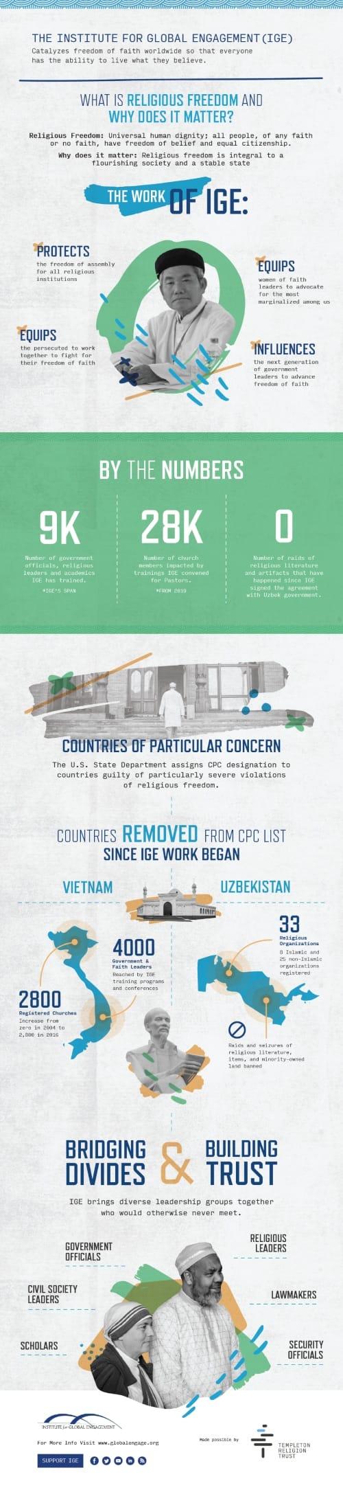 IGE infographic