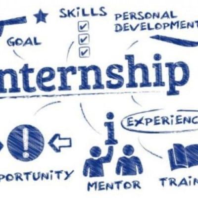 Spring Undergraduate Internship Available